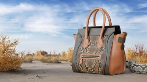 Celine Luggage Bag - one example of a coloring by Tsymbals