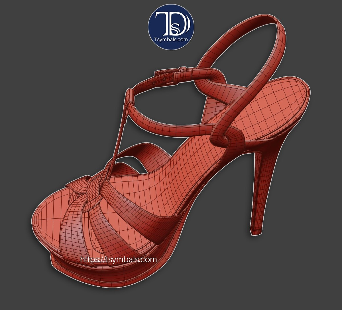 Shoes wire 51